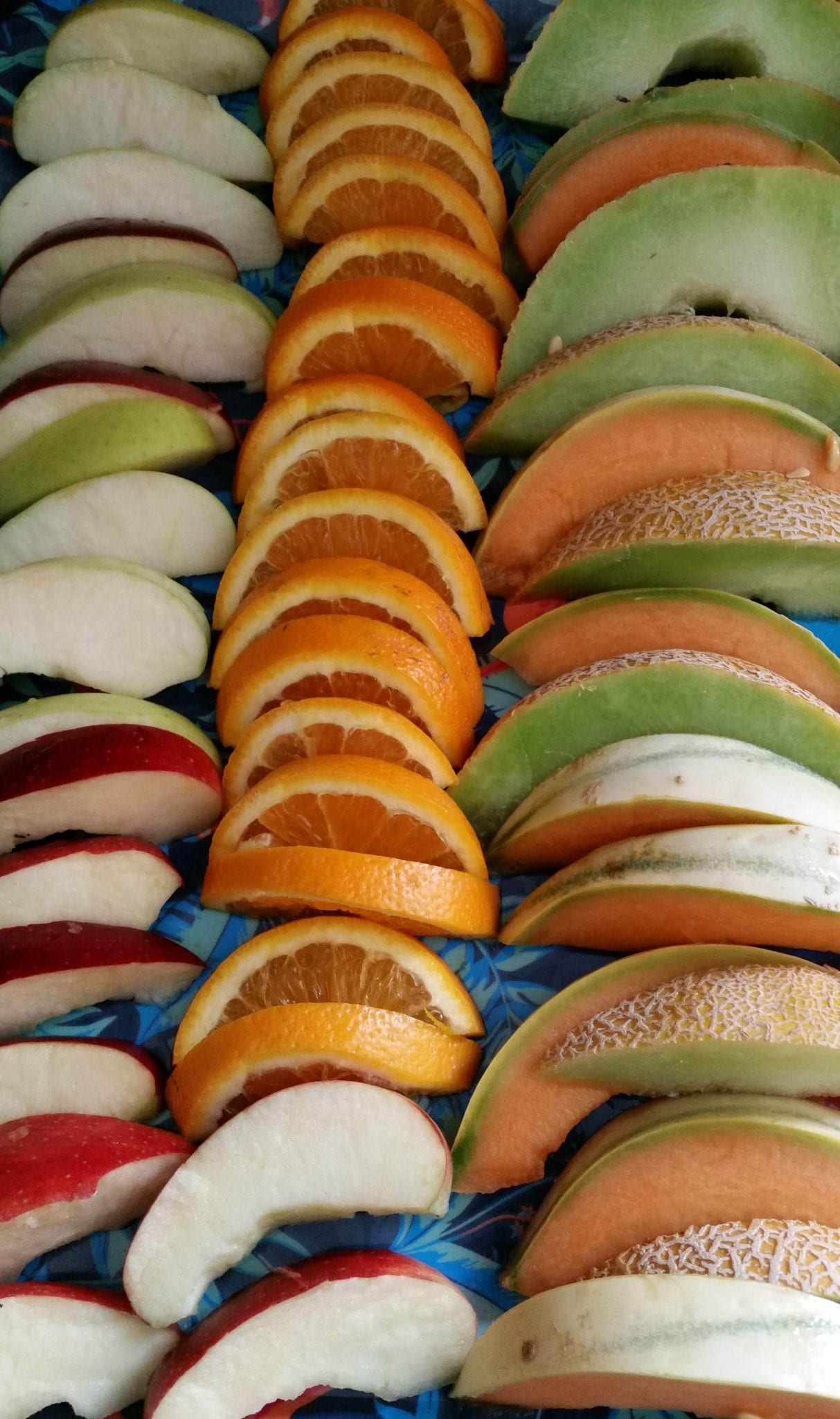 rows of apple, orange and melon slices